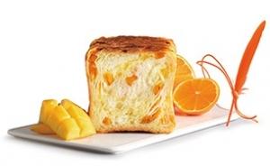 オレンジマンゴーHP(抜粋)