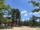 岡崎公園①